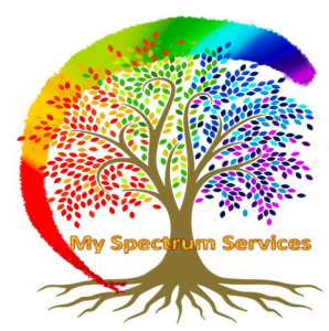 My Spectrum Services Logo